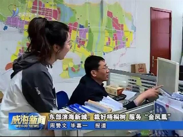 东部滨海新城项目建设