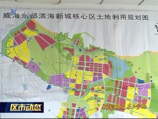"""东部滨海新城:栽好梧桐树 服务""""金凤凰"""""""