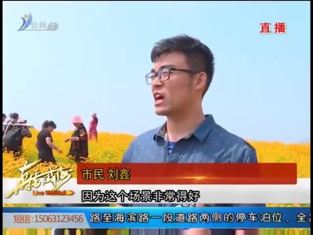 文登�深^:首�媒痣u菊文化�吸引八方客