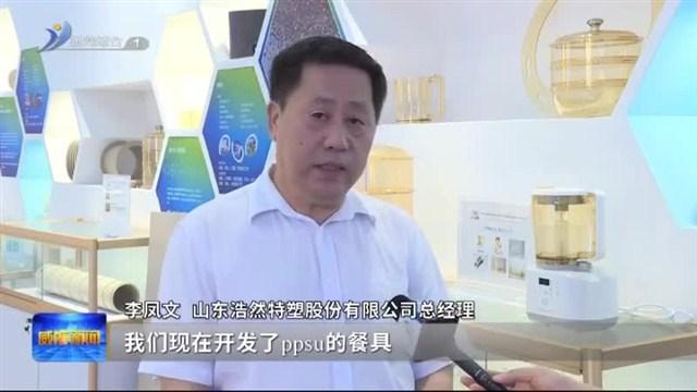 """临港区新材料成长史:一门心思创""""新"""" 一心一意服务"""