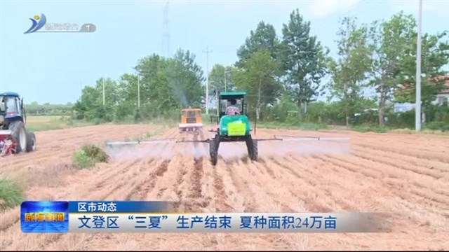 """文登区""""三夏""""生产结束  夏种面积24万亩"""