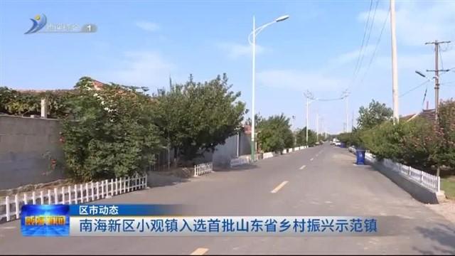 南海新区小观镇入选首批山东省乡村振兴示范镇