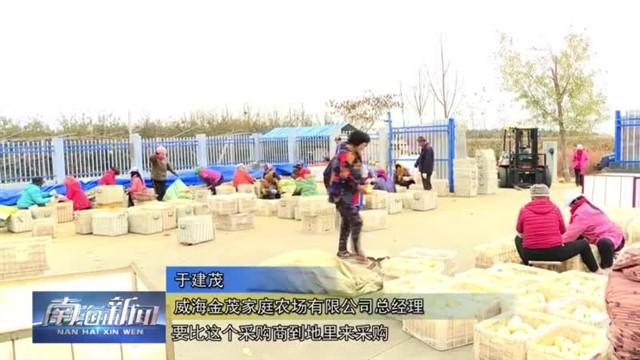 """南海乡村振兴服务队助力农产品搭上""""电商快车"""""""