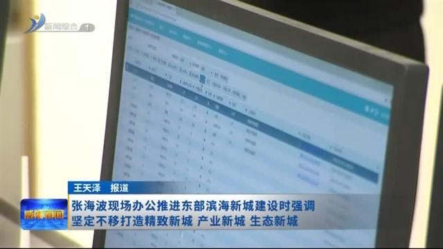 张海波现场办公推进东部滨海新城建设时强调  坚定不移打造精致新城、产业新城、生态新城
