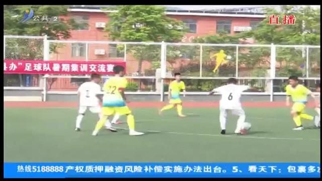 """2020年环翠区""""市队县办""""足球队暑期集训交流赛开赛"""