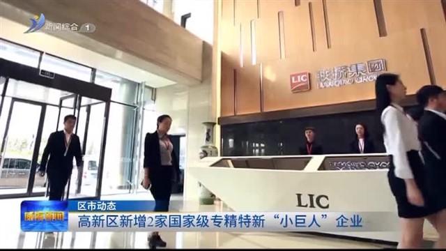 """高新区新增2家国家级专精特新""""小巨人""""企业"""