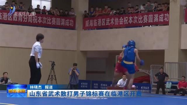 山东省武术散打男子锦标赛在临港区开赛