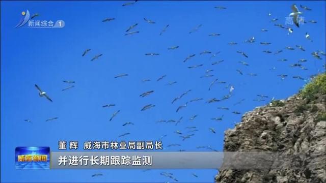 权威发布 进一步加强野生动物保护工作