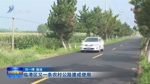 临港区又一条农村公路建成使用