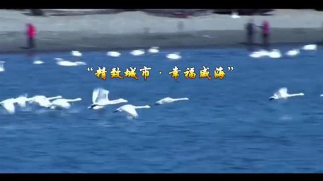 中国海洋资讯 2021-09-16